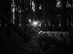 Sparkler in the woods